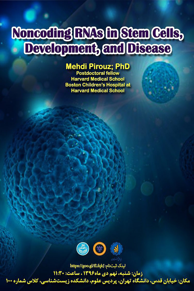 RNAs in Stem Cells, Development, and Disease