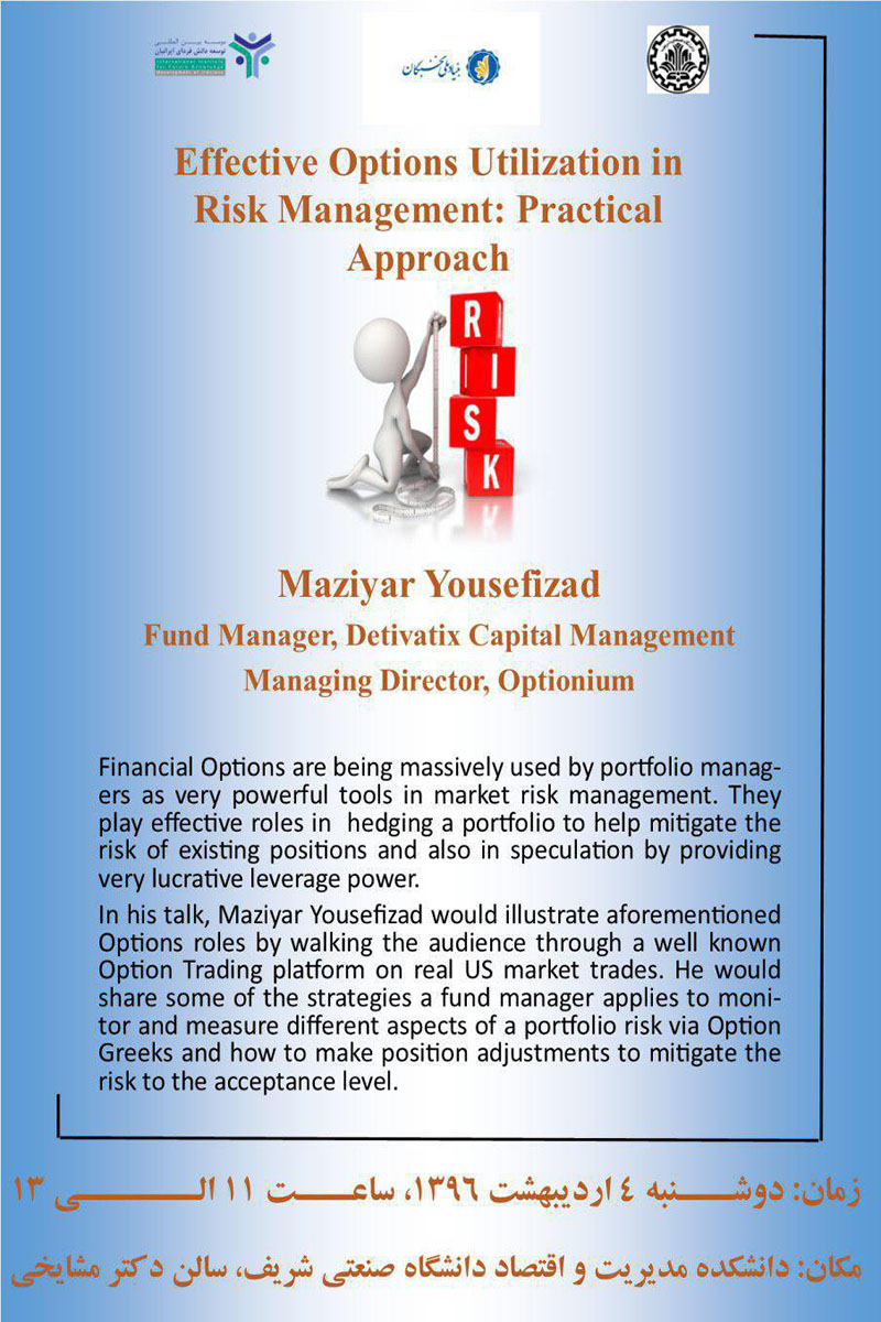 effective options utilization in risk management practical approach