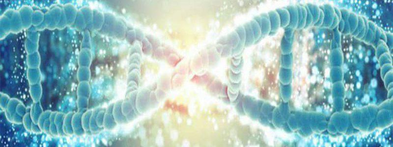 ارزیابی پروفایل های اپی ژنتیک در نمونه های سرطانی که توسط سلول های طبیعی آلوده می شوند- دکتر الناز صابری انصاری