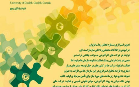 چالش های تدوین استرانژی برای شرکتهای کارآفرین در کشورهای درحال توسعه-  میرحسین طباطبایی لطفی